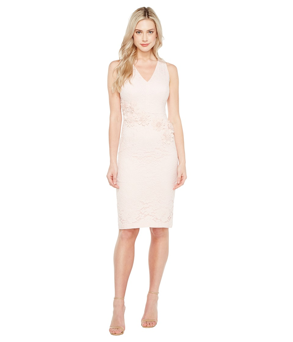 Maggy London - Rose Garden Lace V-Neck Sheathe Dress (Rose) Womens Dress