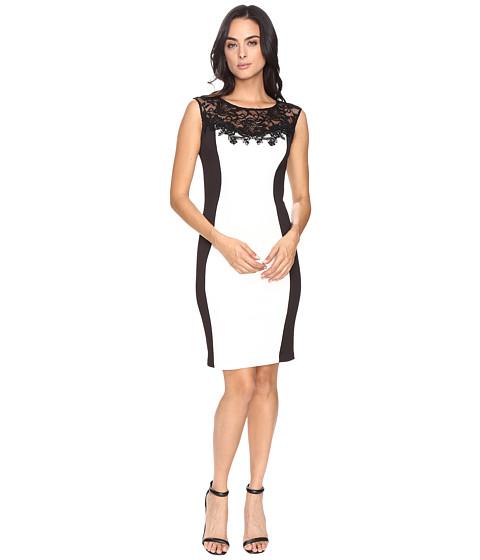 Sangria Scuba Sheath Dress