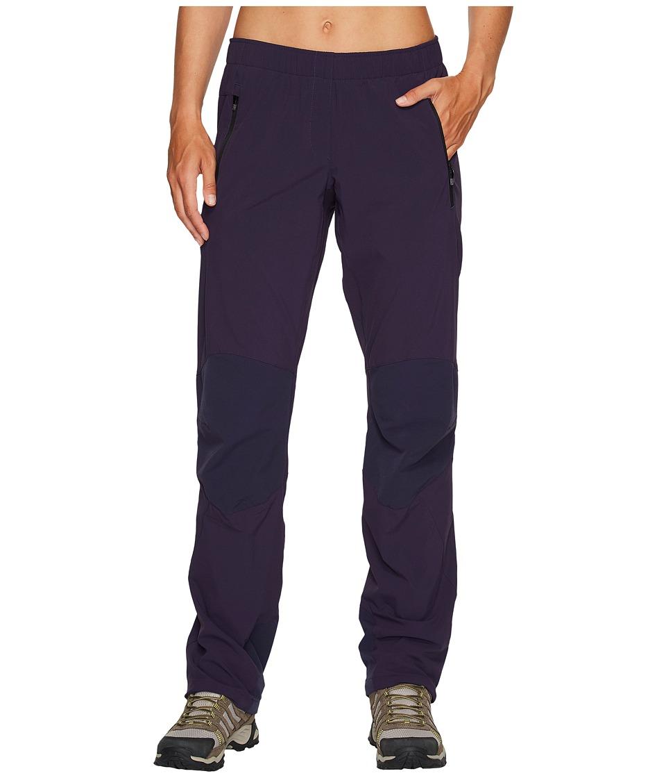 adidas Outdoor Terrex Multi Pants (Noble Ink) Women