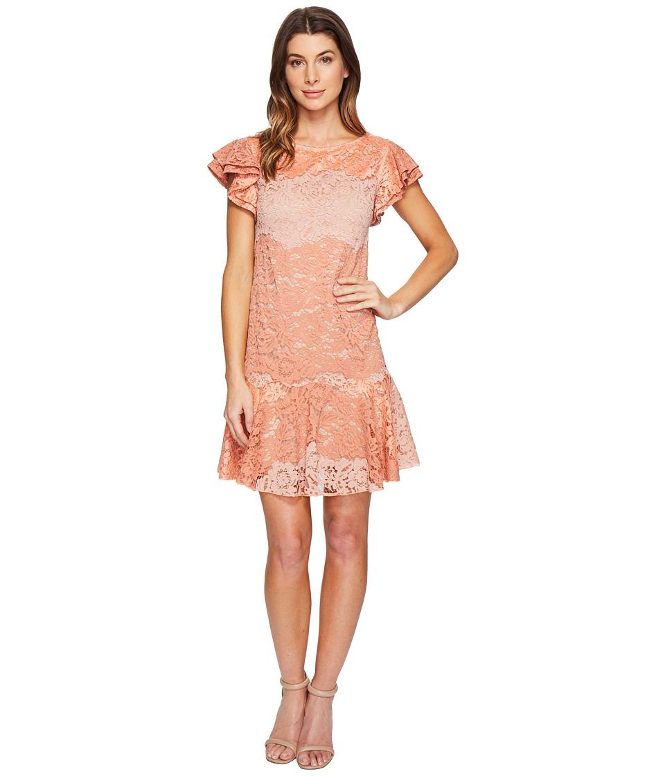 Eva by Eva Franco Lotus Dress (Coral Clay) Women