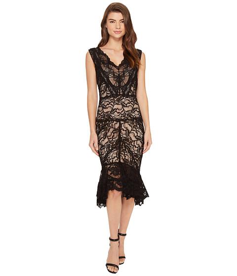 Nicole Miller Havana Stretch Lace Dress - Black/Nude