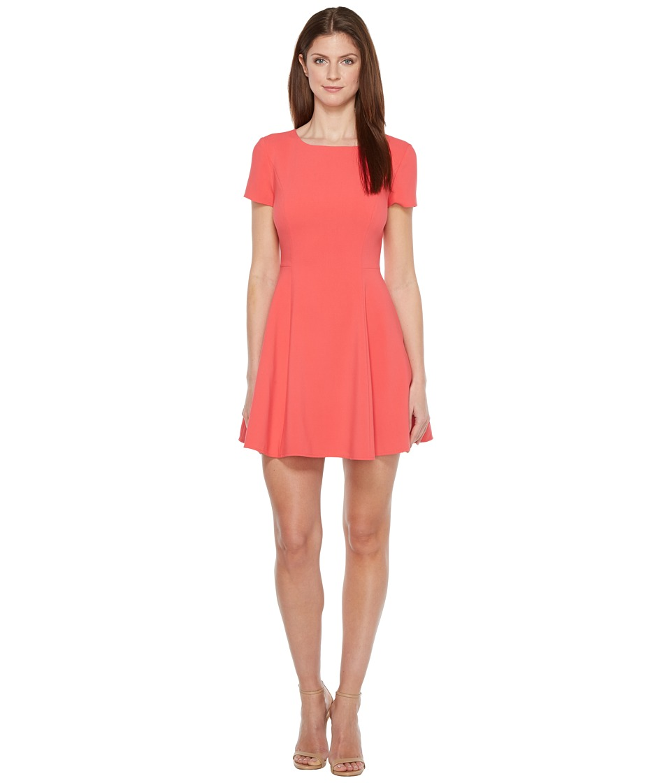 Halston Heritage Short Sleeve Wide Crew Fit Flare Dress (Poppy) Women