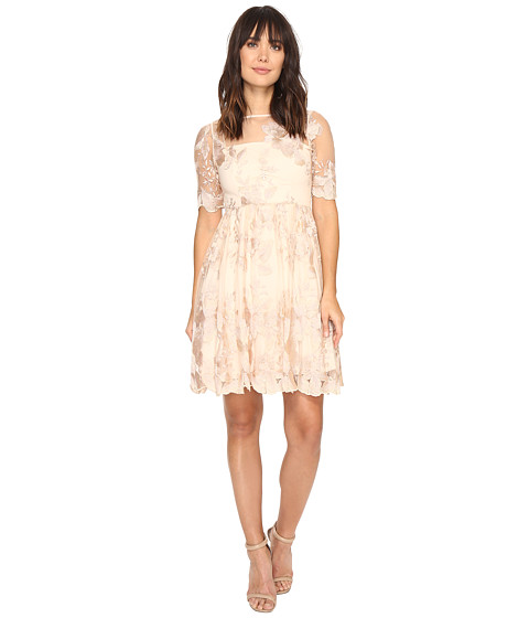 Adrianna Papell Short Elbow Length Embroidered Party Dress - 6pm.com