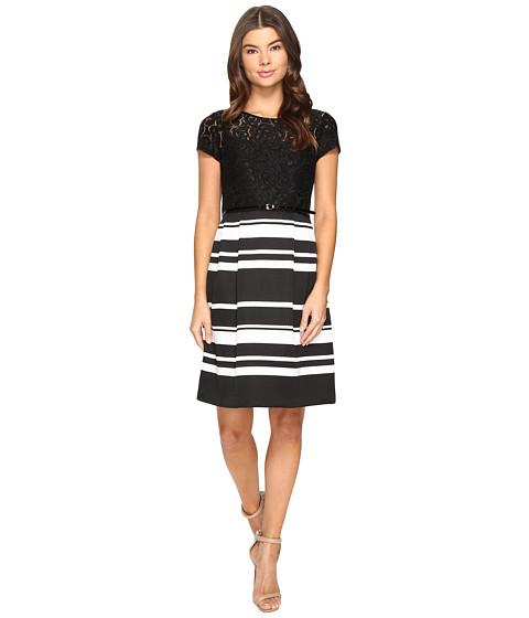 Ellen Tracy Lace and Pique Dress