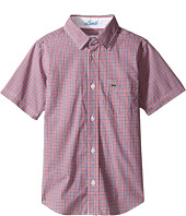 Lacoste Kids - Short Sleeve Check (Little Kids/Big Kids)
