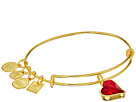 Alex and Ani Alex and Ani Charity By Design Heart Of Strength Bangle -