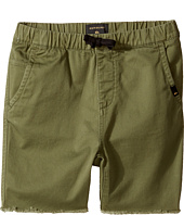Quiksilver Kids - Fun Days Shorts (Toddler/Little Kids)