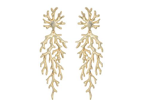 Kendra Scott Aviana Hourglass Earrings - Gold Metal
