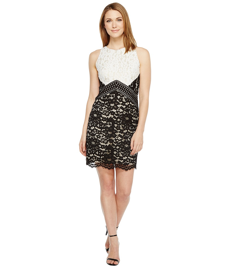 Vince Camuto Lace Color Block Shift Dress (Black/Ivory) Women