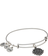 Alex and Ani - Path of Symbols-Compass III Bangle