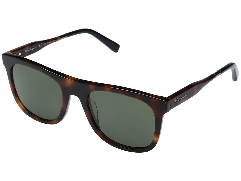 Salvatore Ferragamo SF864S (Tortoise) Fashion Sunglasses