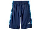 adidas Kids adidas Kids - Full Court Shorts (Big Kids)