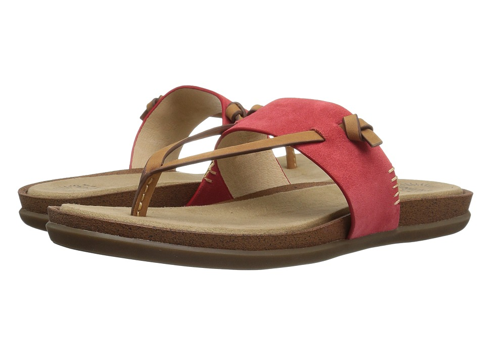 G.H. Bass & Co. Shannon (Poppy Suede) Women
