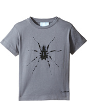 Lanvin Kids - Short Sleeve T-Shirt w/ Spider Design On Front (Toddler/Little Kids)