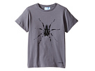 Lanvin Kids - Short Sleeve T-Shirt w/ Spider Design On Front (Little Kids/Big Kids)