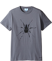 Lanvin Kids - Short Sleeve T-Shirt w/ Spider Design On Front (Big Kids)