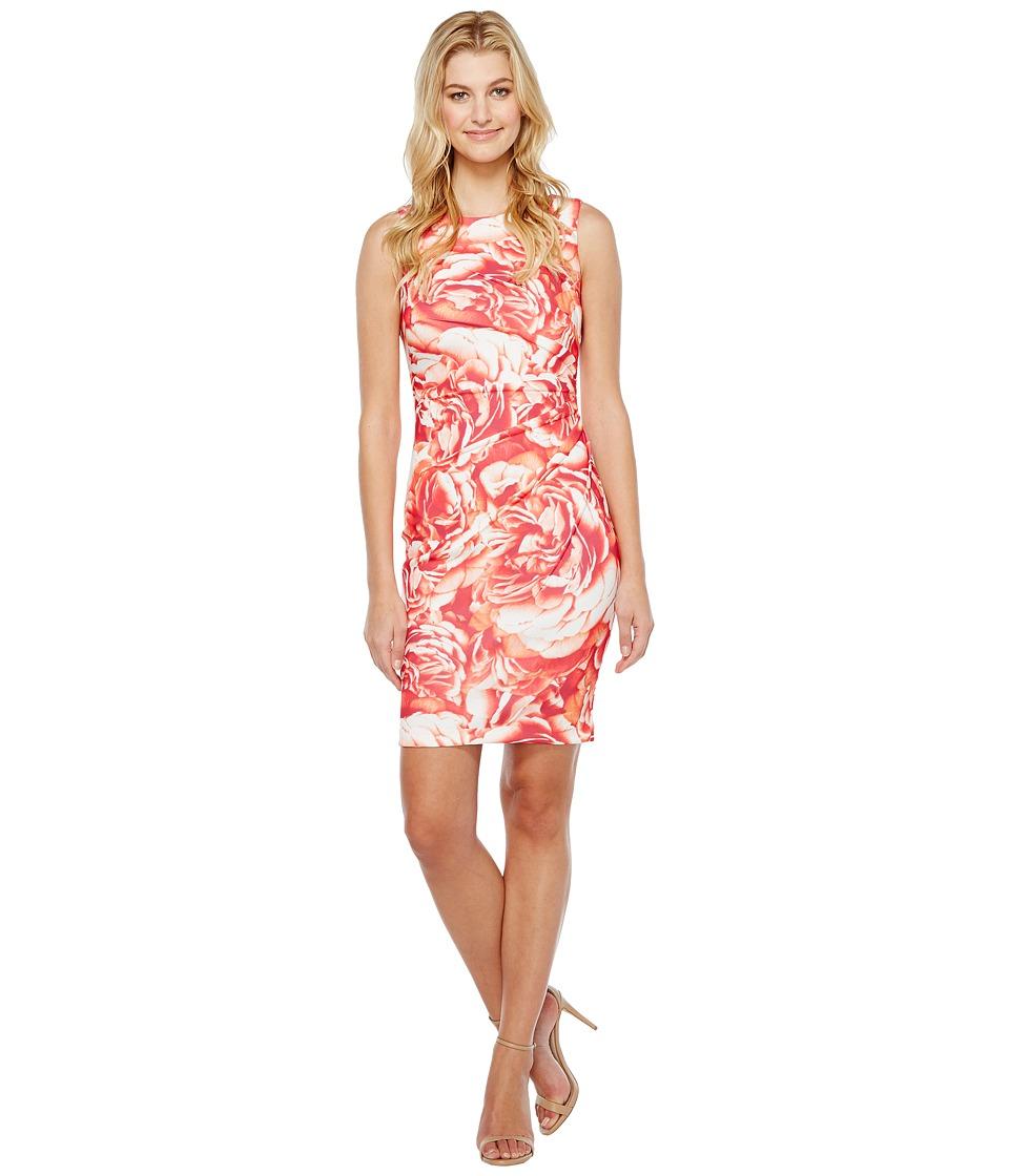 Calvin Klein Blurred Floral Starburst Sheath Dress (Watermelon Multi) Women