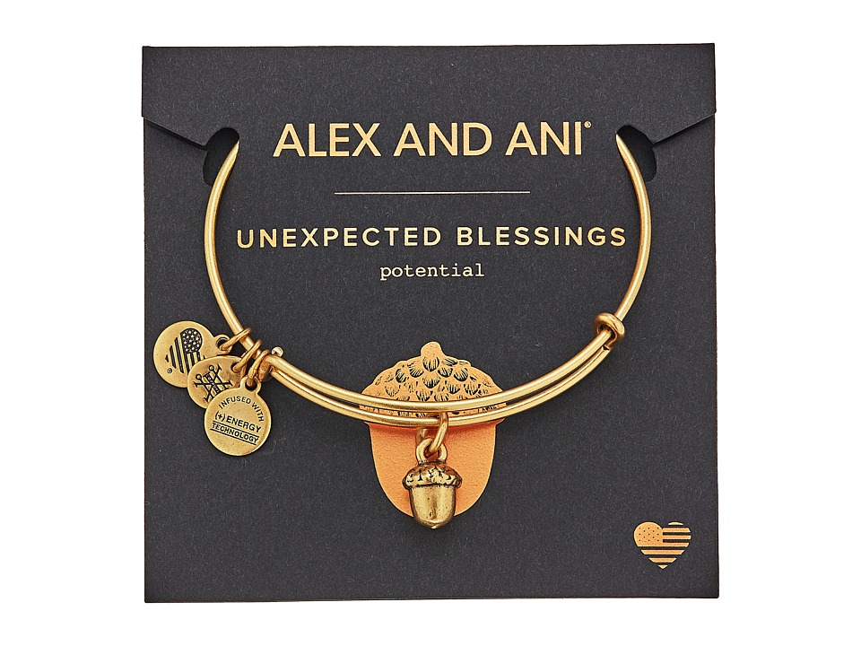 Alex and Ani - Path of Symbols - Unexpected Blessings II Bangle (Rafaelian Gold) Bracelet