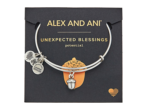 Alex and Ani Path of Symbols - Unexpected Blessings II Bangle - Rafaelian Silver