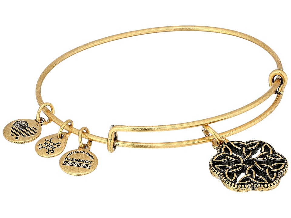 Alex and Ani Alex and Ani - Path of Symbols - Endless Knot III Bangle