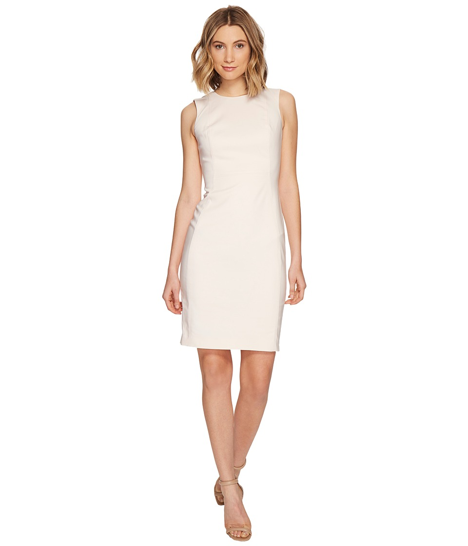 Calvin Klein Cotton Princess Panel Sheath Dress (Blossom) Women