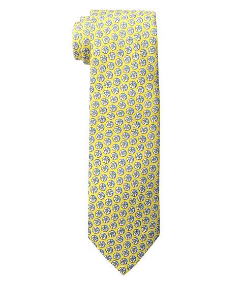 Vineyard Vines Sand Dollar Printed Tie