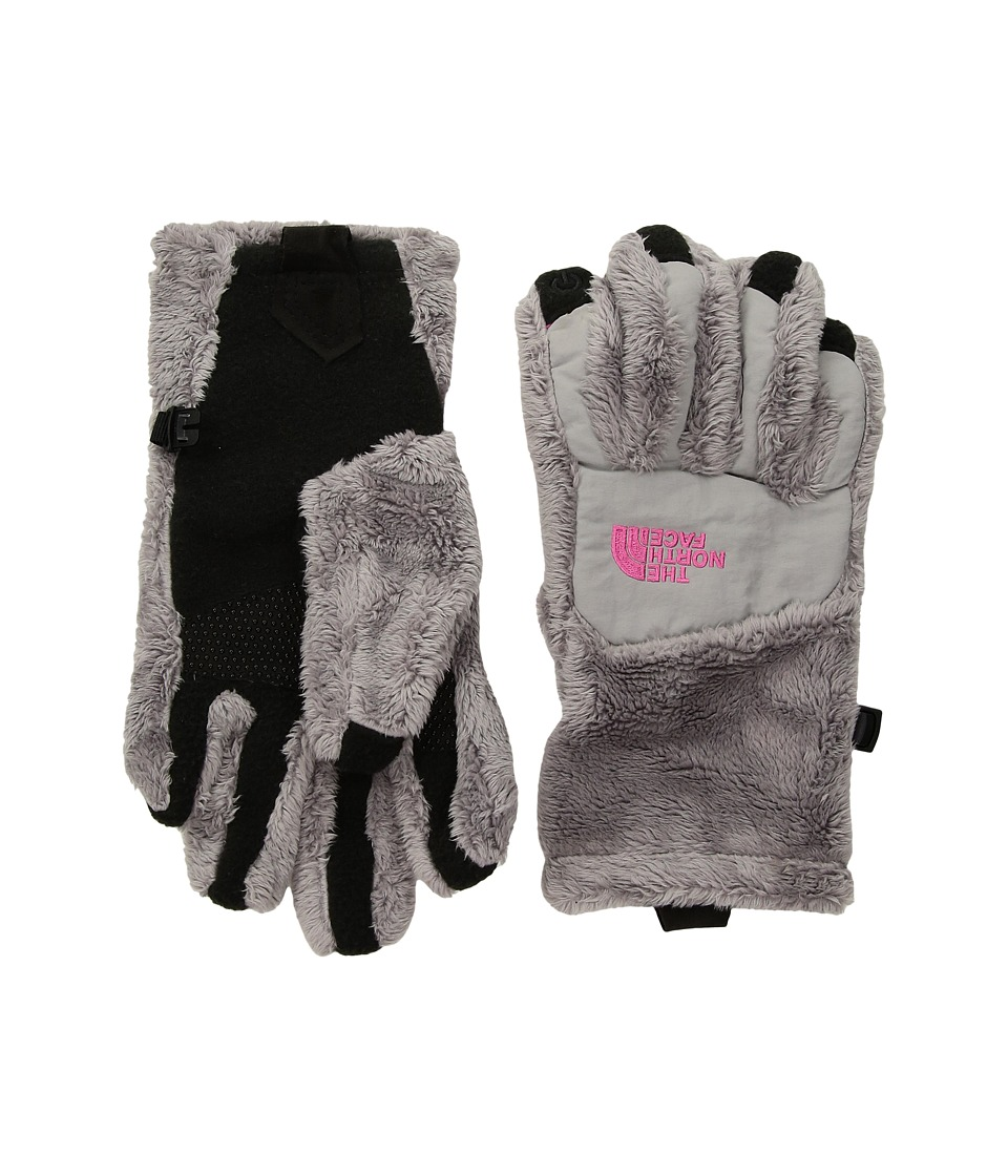 The North Face Kids Denali Thermal Etiptm Glove (Big Kids) (Metallic Silver/Petticoat Pink) Ski Gloves