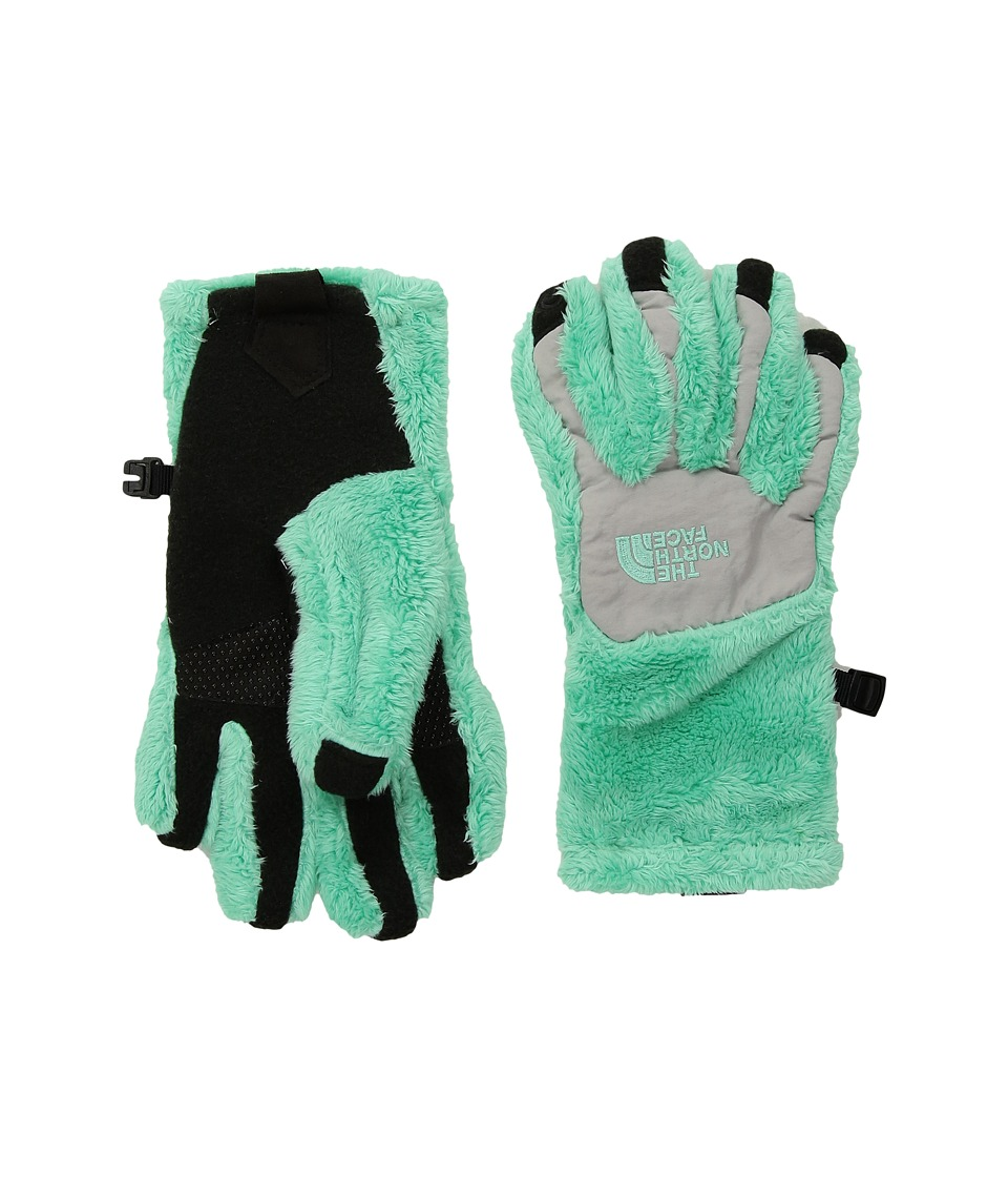The North Face Kids Denali Thermal Etiptm Glove (Big Kids) (Bermuda Green/Metallic Silver) Ski Gloves
