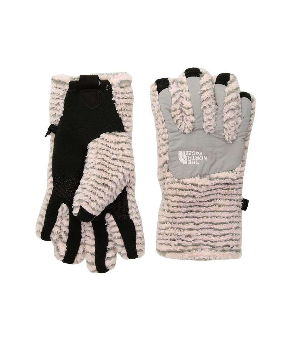 The North Face Kids Denali Thermal Etiptm Glove (Big Kids) (Purdy Pink Stripe/Metallic Silver) Ski Gloves