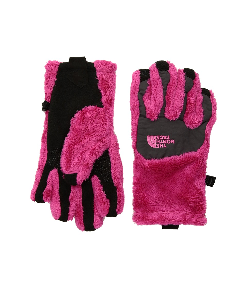 The North Face Kids Denali Thermal Etiptm Glove (Big Kids) (Petticoat Pink/Graphite Grey) Ski Gloves