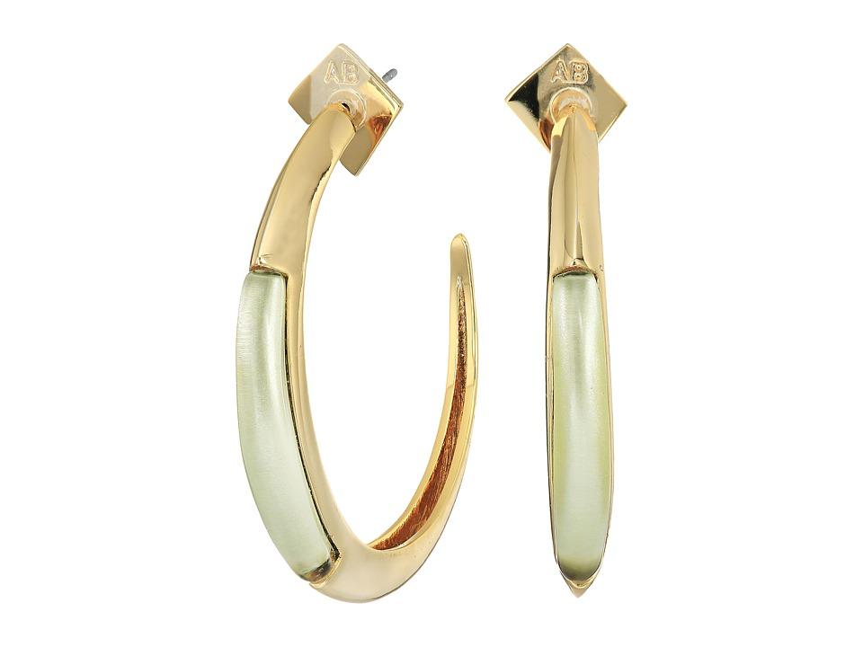 Alexis Bittar - Crescent Hoop Earrings
