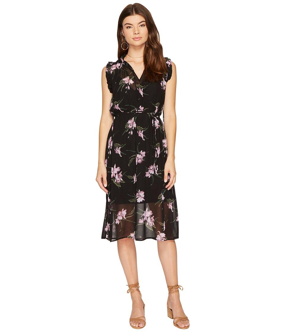 BB Dakota Sarah Sheer Printed Dress (Black) Women