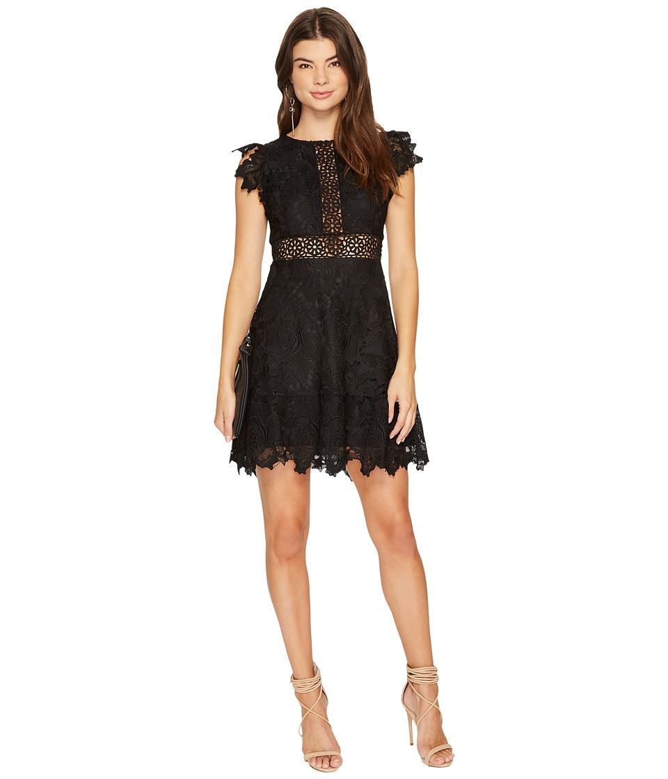 BB Dakota Calvin Scalloped Trim Lace Dress (Black) Women