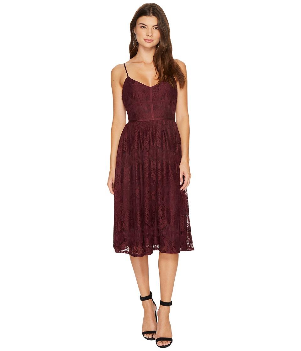 BB Dakota Galina Lace Fit Flare Midi Dress (Fig) Women