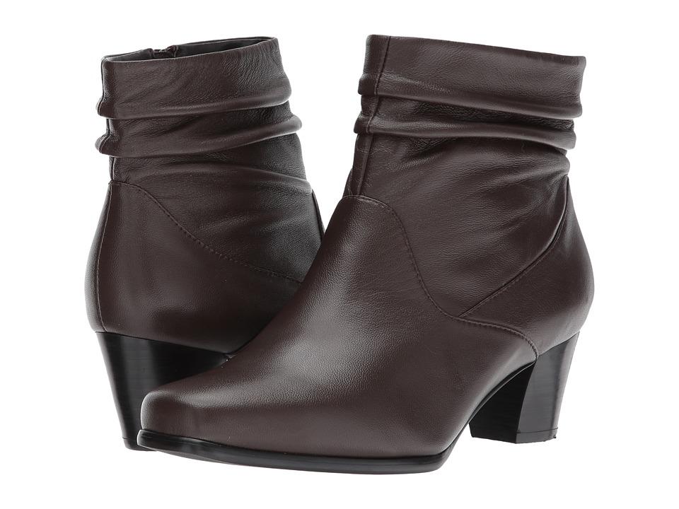 David Tate Shadow (Brown) Women's Shoes