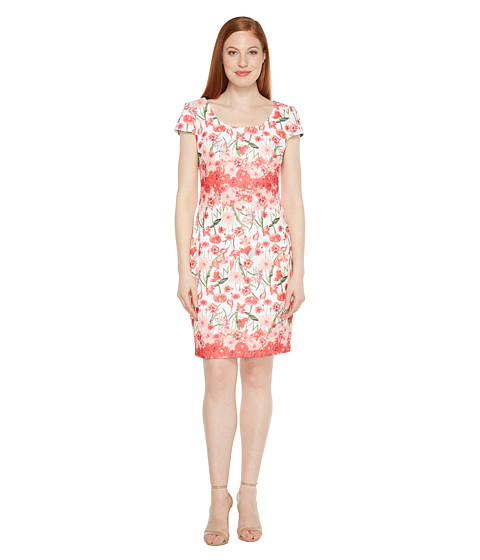 Sangria Floral Printed Sheath with Cap Sleeve