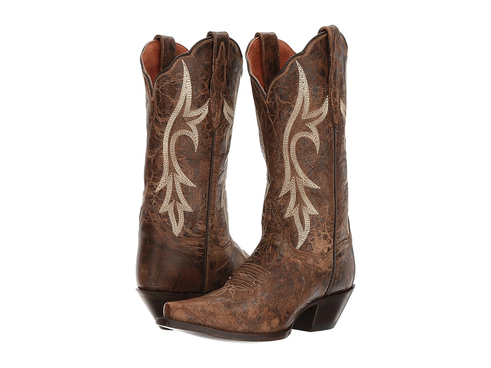 Dan Post Knockout (Brown) Cowboy Boots