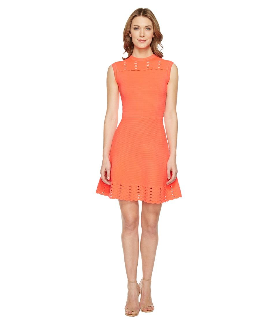 Ted Baker Jacquard Panel Skater Dress (Mid Orange) Women