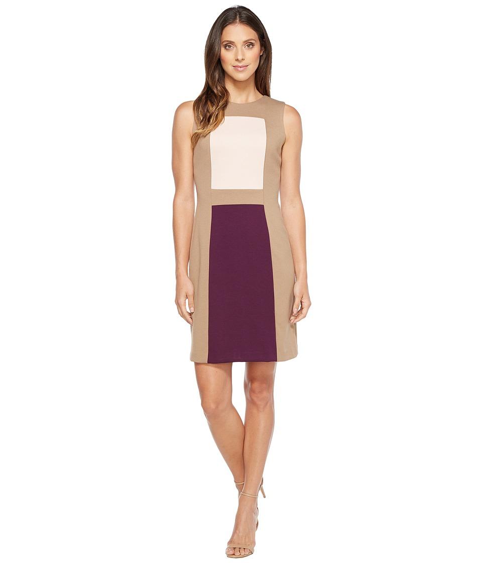 Calvin Klein Color Block Sheath Dress (Taupe/Blush/Aubergine) Women