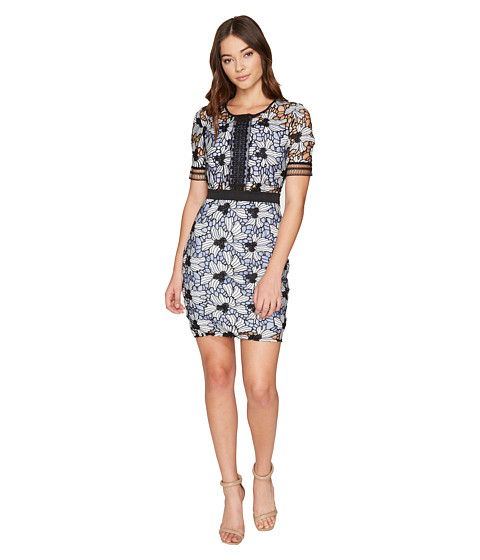 ROMEO & JULIET COUTURE Contrast Lace Short Sleeve Dress