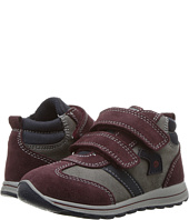 Primigi Kids - PTI 8530 (Toddler)