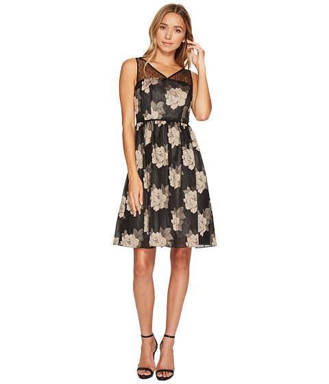 Adrianna Papell Rose Burnout Fit and Flare Dress