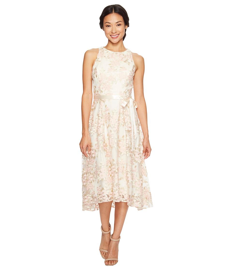 Tahari by ASL Petite Petite Tea-Length Embroidered Dress (Champagne/Petal) Women