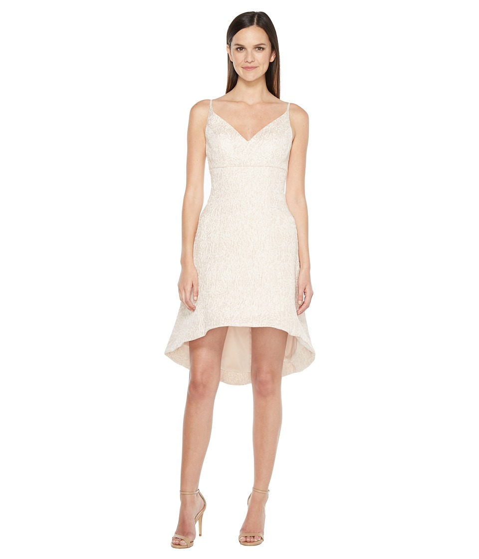 Aidan Mattox Jacquard Fit and Flare Dress (Petal) Women