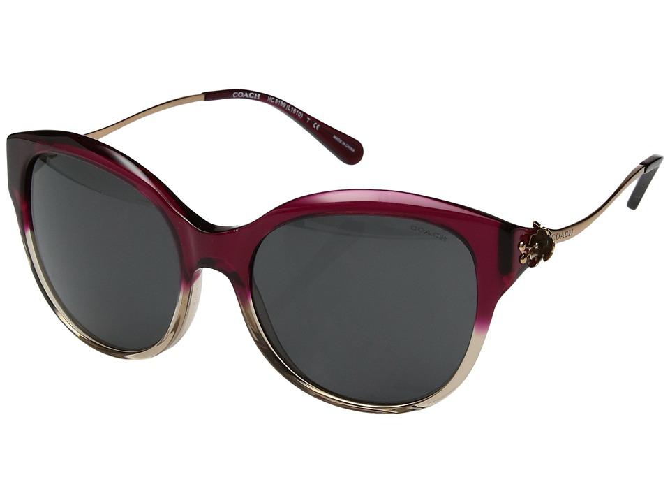 COACH - 0HC8189 (Red Sand Gradient/Dark Grey Solid) Fashion Sunglasses
