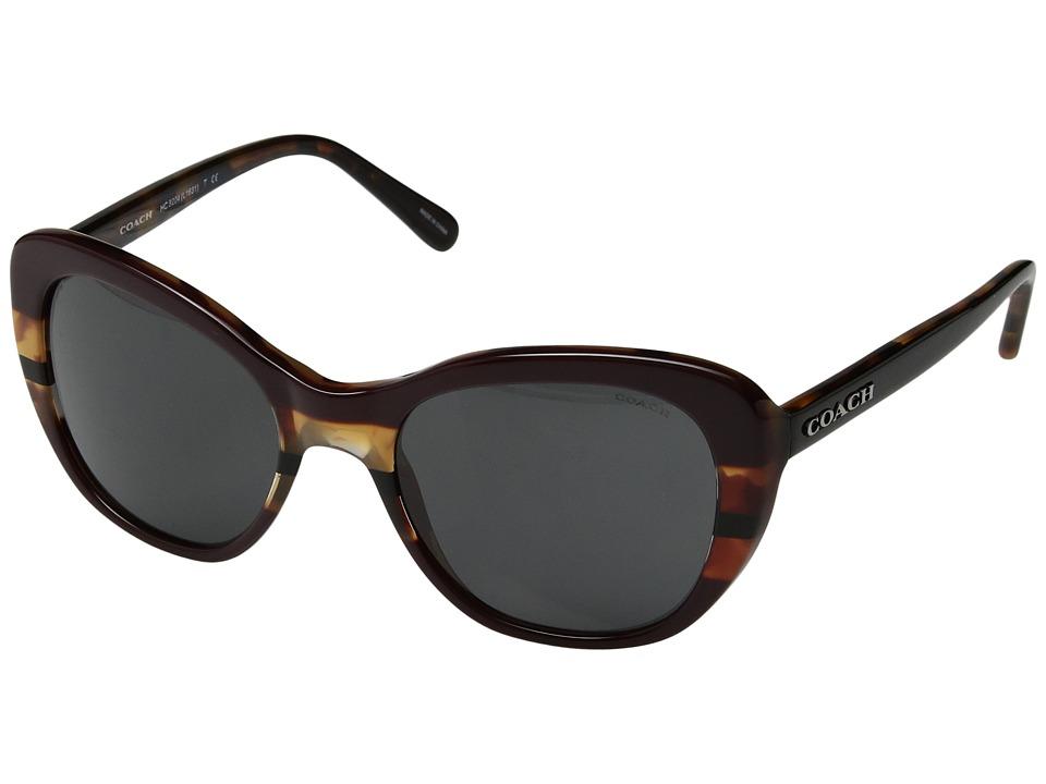 COACH - 0HC8204 52mm (Oxblood Tort Varsity Stripe/Dark Grey Solid) Fashion Sunglasses