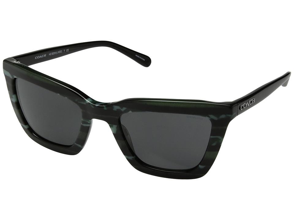 COACH - 0HC8203 (Emerald Glitter Varsity Stripe/Dark Grey Solid) Fashion Sunglasses