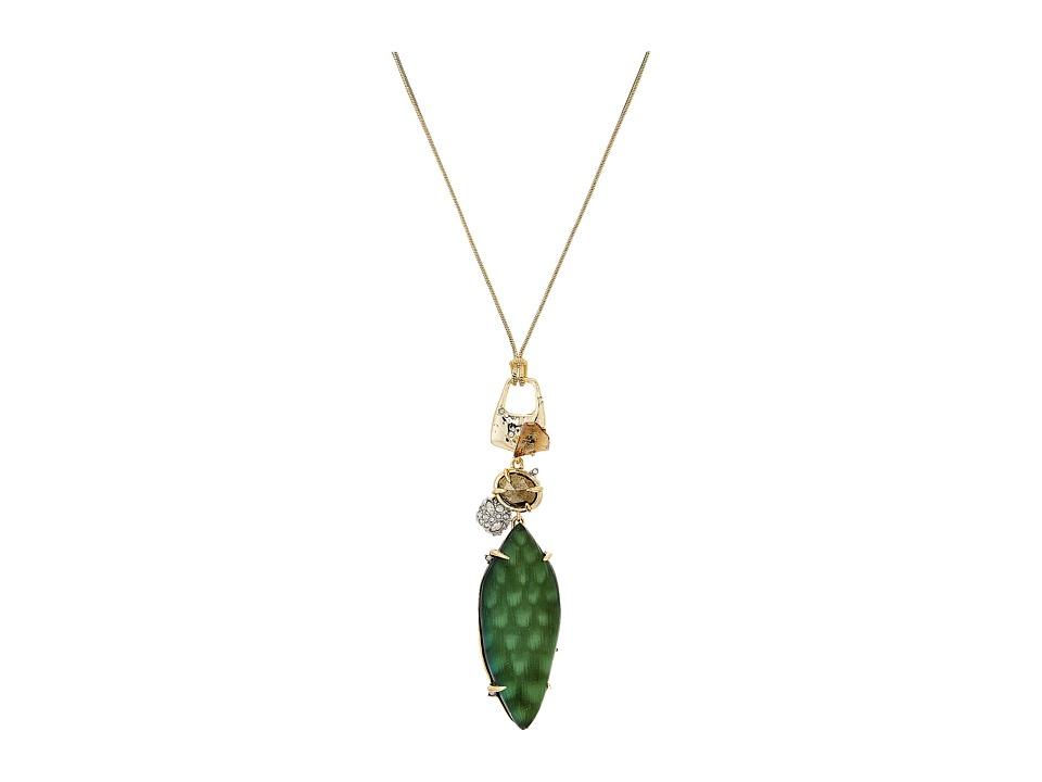 Alexis Bittar - Long Rocky Pendant Necklace
