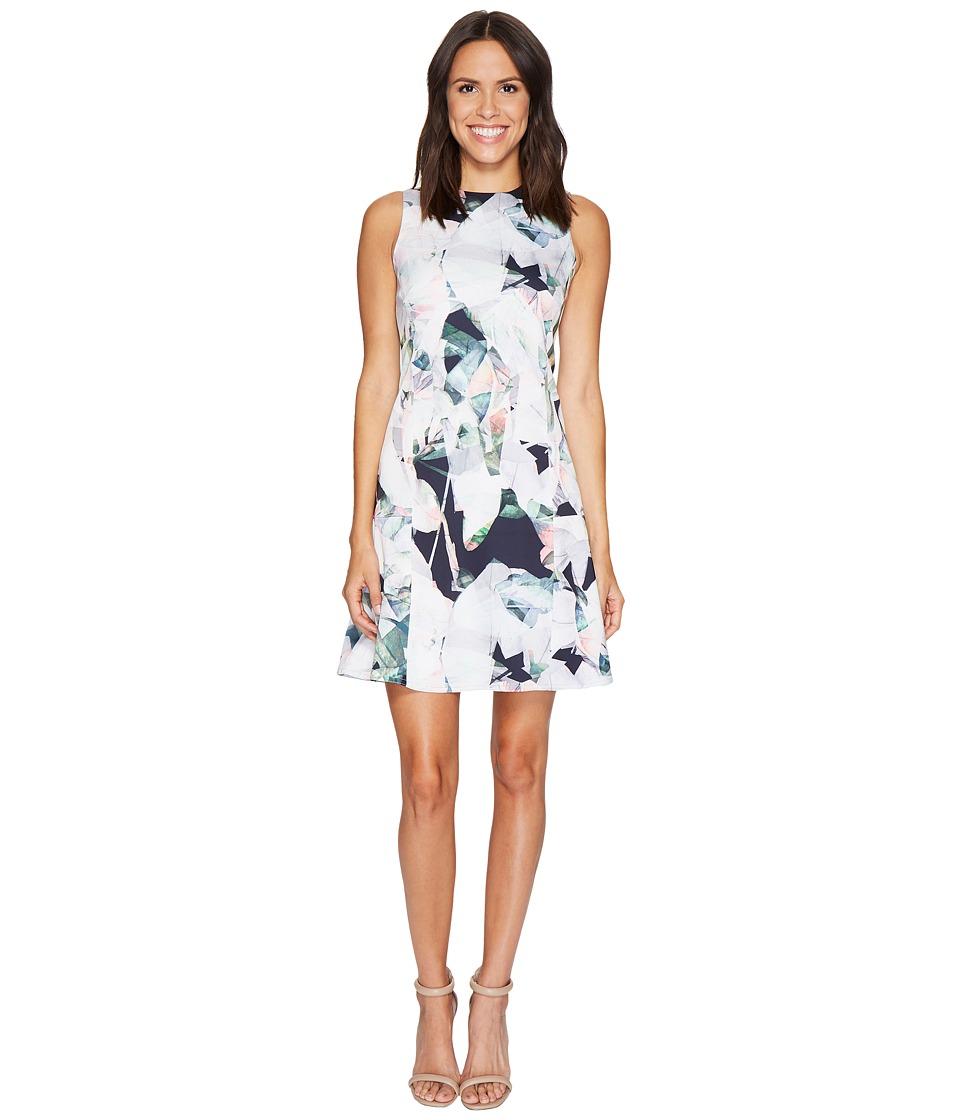 Ellen Tracy Sleeveless Seamed Flounce Dress (Floral Multi Combo) Women