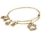 Alex and Ani Alex and Ani Charity By Design Prints of Love